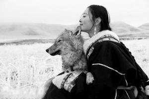 一位美女画家与狼共舞的故事