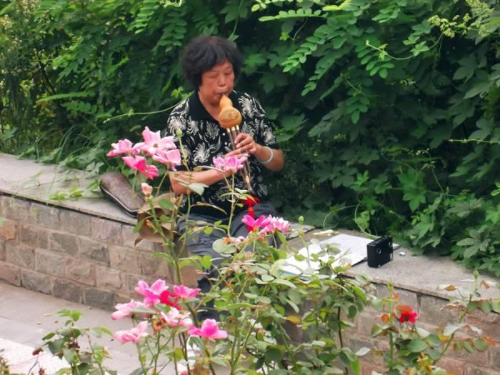 (茉莉花)吹葫芦丝的老太太